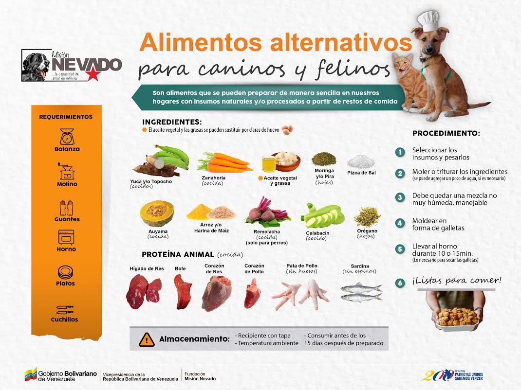 Receta-1-alimentos-alternativos